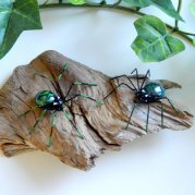 https://www.etsy.com/ca/listing/471390358/two-small-green-spiders-on-driftwood?