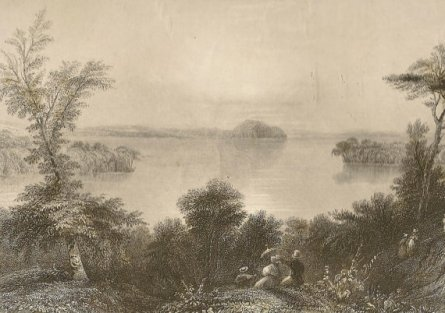 https://www.etsy.com/ca/listing/484973223/saratoga-lake-engraving-from-1850s-birds?