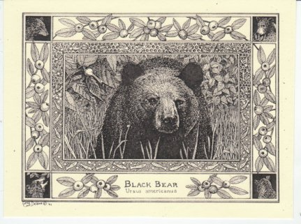 https://www.etsy.com/listing/195047969/black-bear-this-6-pack-of-blank-ivory?