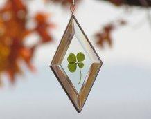 https://www.etsy.com/ca/listing/486460641/genuine-four-leaf-clover-glass?