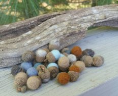 https://www.etsy.com/listing/255558929/tiny-wool-felted-post-oak-acorns-fall?