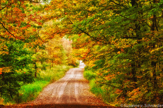 susanne-autumn-road