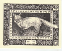 https://www.etsy.com/ca/listing/195169136/red-fox-this-6-pack-of-blank-ivory-cards?