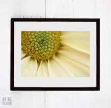 https://www.etsy.com/ca/listing/158712935/digital-download-daisy-yellow-flower?