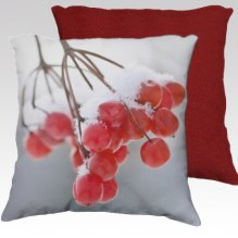 https://www.etsy.com/ca/listing/162668853/red-photo-pillow-cover-decorative-throw?