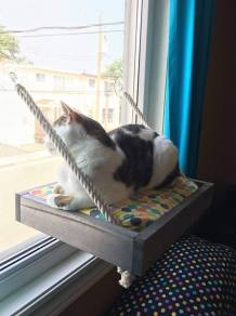 https://www.etsy.com/ca/listing/551313468/cat-window-seat?