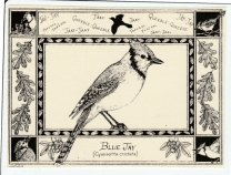 https://www.etsy.com/ca/listing/218511739/blue-jay-this-6-pack-of-blank-ivory?