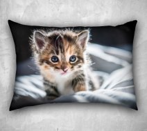 https://www.etsy.com/ca/listing/211315661/kitten-photo-pillow-cover-decorative?
