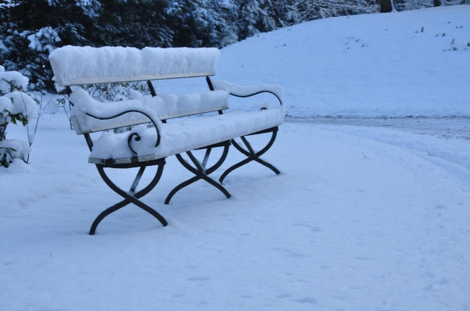 january blue bench