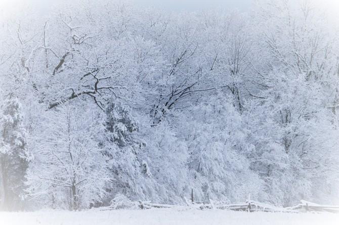 Winter Hush
